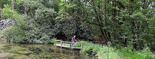 Natuurgebieden Twente Natuur De 10 Mooiste Natuurgebieden In Twente