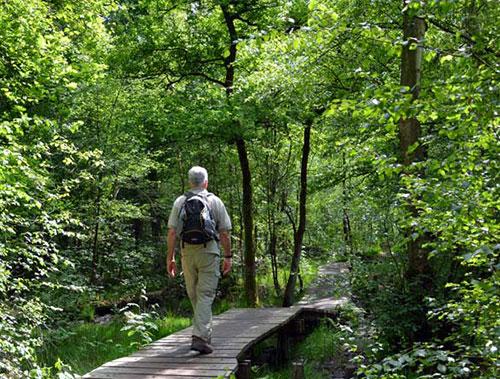 Wandlen Innen kuiperberg twente wandelen in twente wandelroutes vanaf uw
