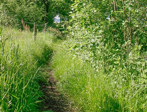 Wandlen Innen kuiperberg twente wandelroutes wandelen in en om ootmarsum